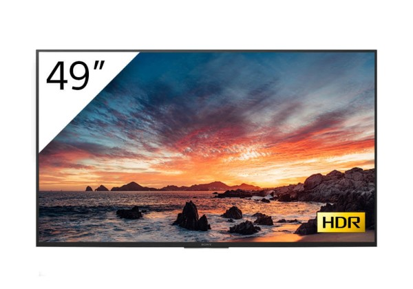 Sony BRAVIA FWD-49X80H-T 4K-HDR LED Prof.-Display 49''