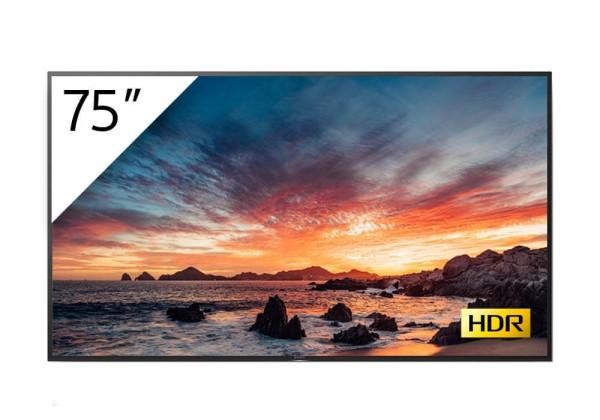 Sony BRAVIA FWD-75X80H-T 4K-HDR LED Prof.-Display 75''