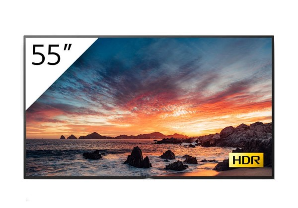 Sony BRAVIA FWD-55X80H-T 4K-HDR LED Prof.-Display 55''